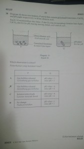 IMG_00000896